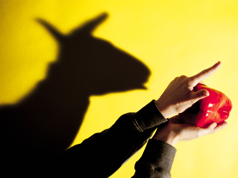 SOMBRAS_burro