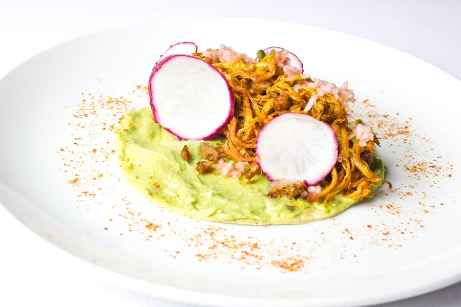 TACO COCHINITA_opt