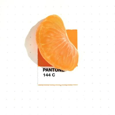 Este-perfil-de-Instagram-es-una-paleta-de-colores-Pantone-superoriginal22