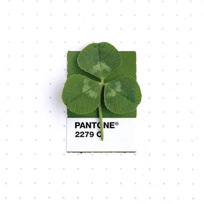 pantone-matching-system-everyday-objects-tiny-pms-project-inka-mathews-houston-texas-1-1
