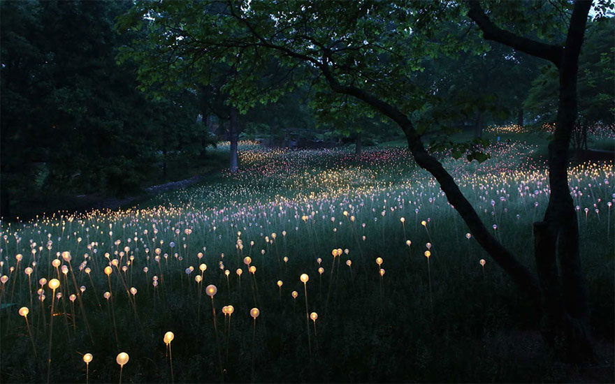 surreal-light-installations-field-of-light-bruce-munro-uluru-australia-16