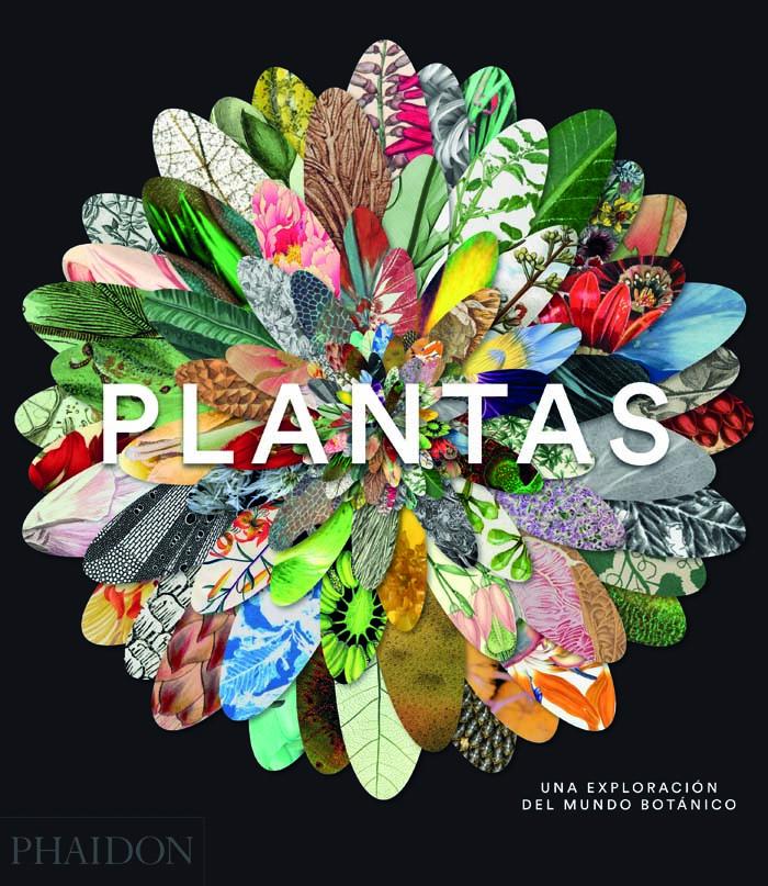 plant-sp-2d