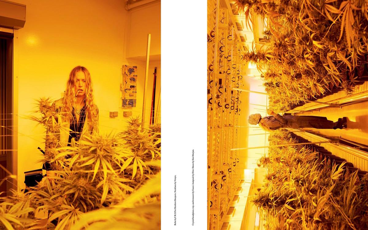 juergen-teller-rihanna-weed-editorial-02-1200x800