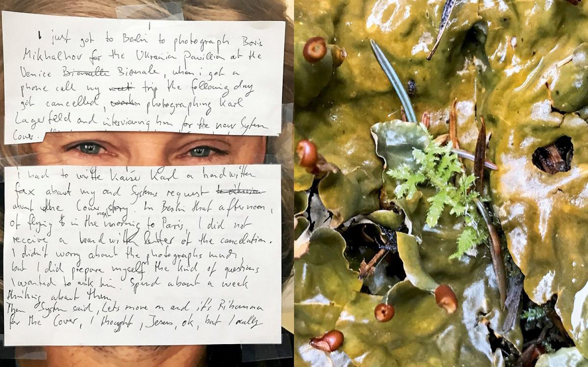 juergen-teller-rihanna-weed-editorial-03-1200x800