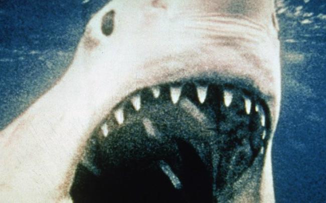 ¡La banda sonora de Tiburón -por fin- en vinilo!