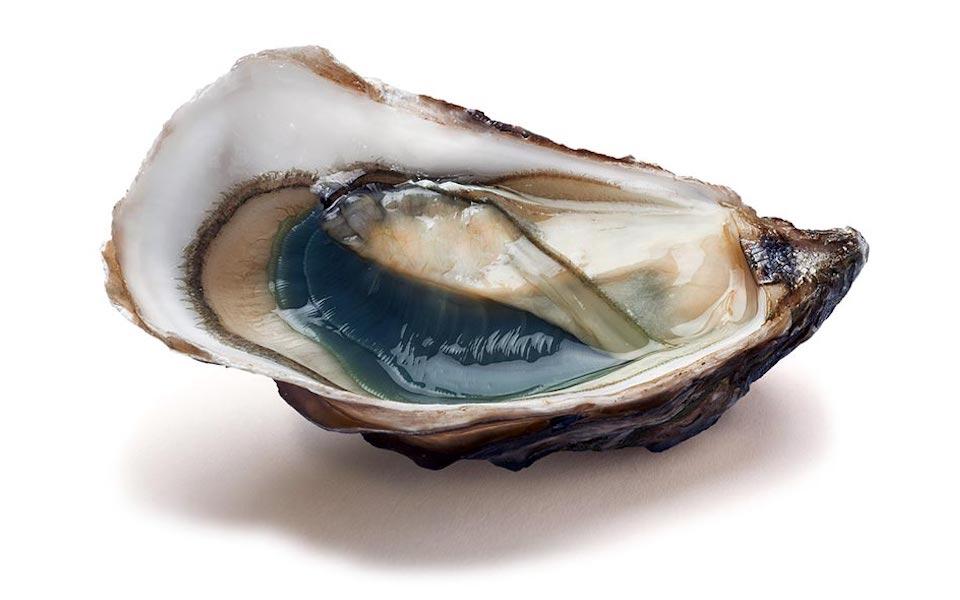 huitres-amelie-slide-6