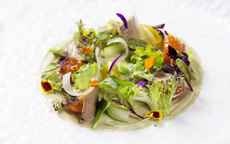 mh-oria-ensalada-de-crema-de-pescado-azul-y-brotes-jovenes-08937-991