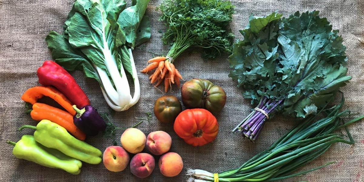 Cinco libros de recetas vegetarianas para romper con lo establecido en nutrición