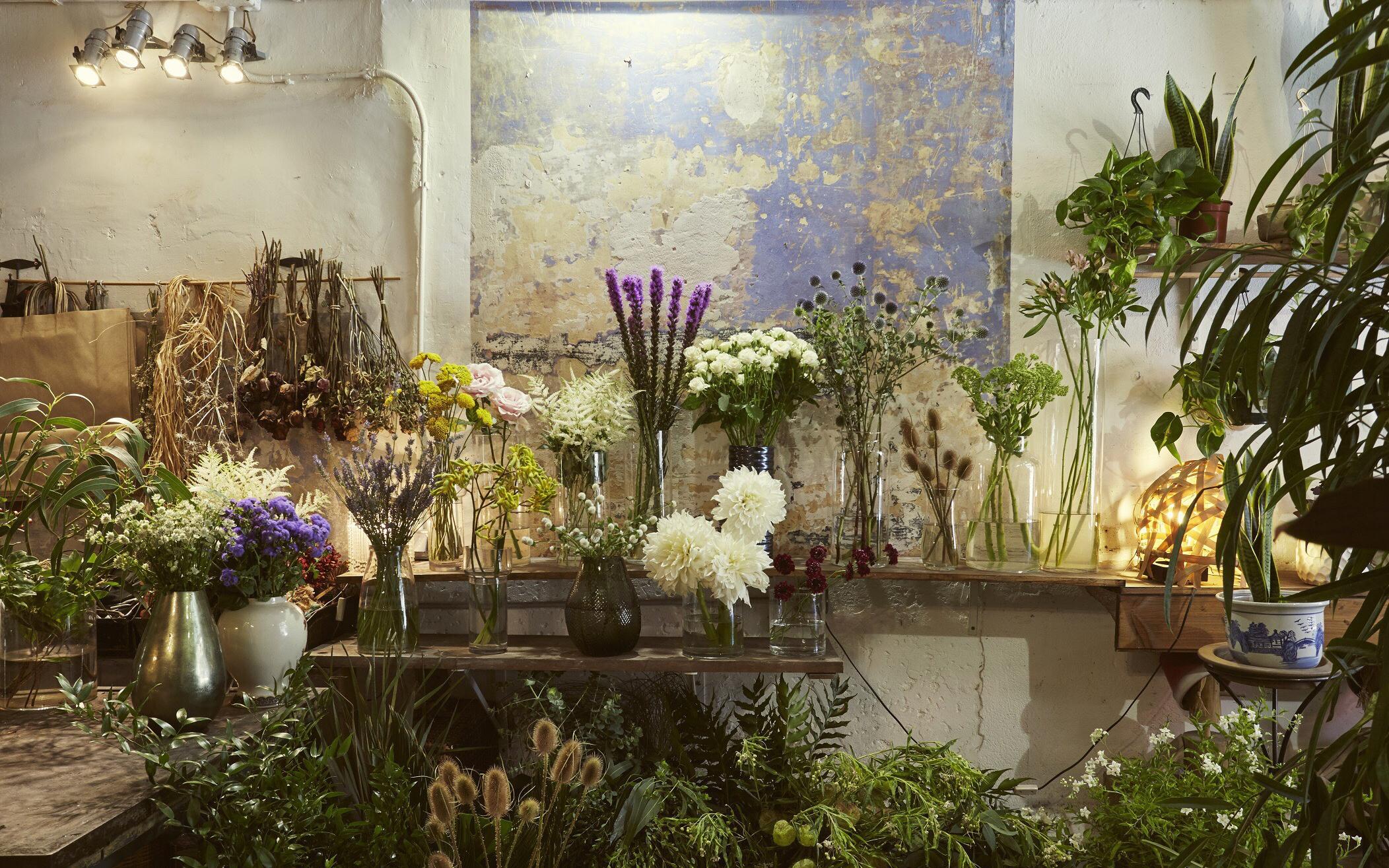 Flowerswill: los mensajes que revelan las flores