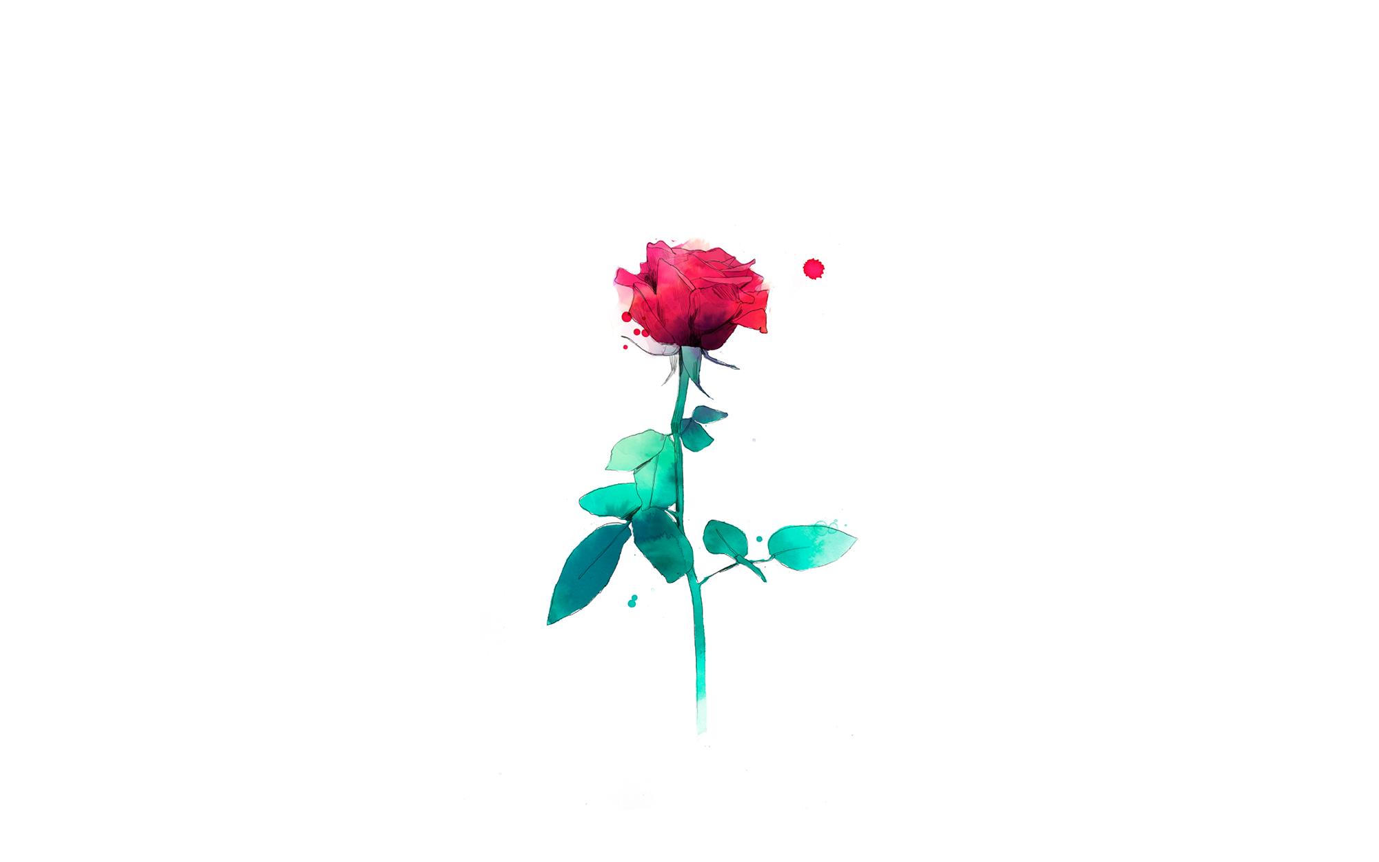 Casa SEAT y Conrad Roset regalan rosas para un Sant Jordi muy especial
